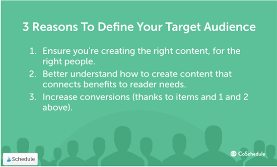CoSchedule Summary Of Target Audience