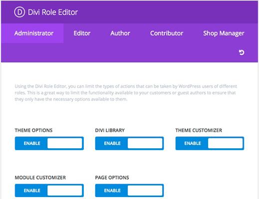 Divi Builder Role Editor
