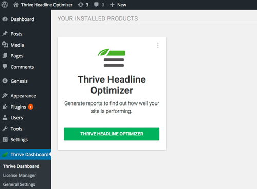 Thrive Headline Optimizer Dashboard
