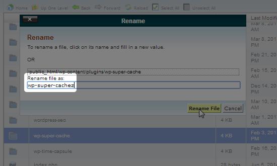 cpanel rename file