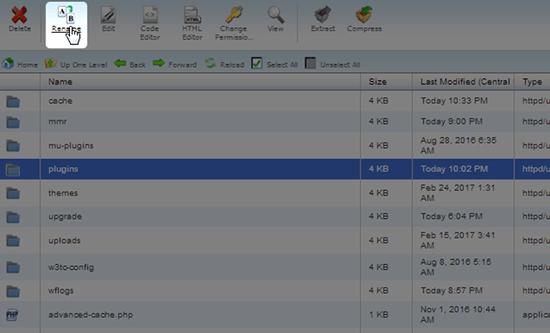 cpanel rename plugins folder