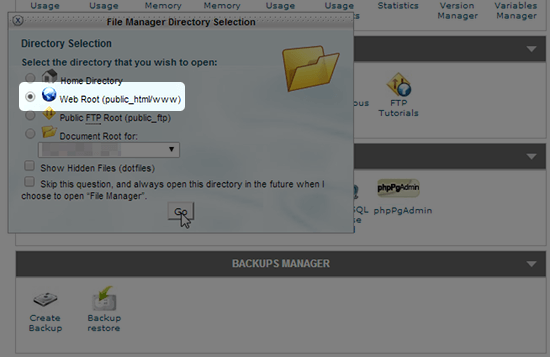cpanel web root directory