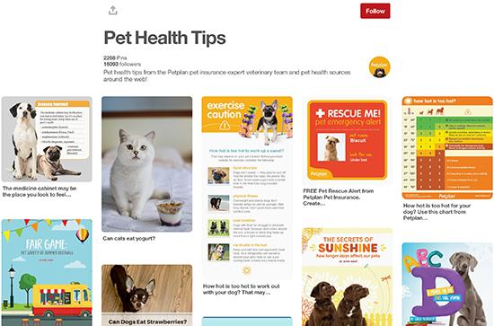 Petplan Pinterest Pet Health Tips