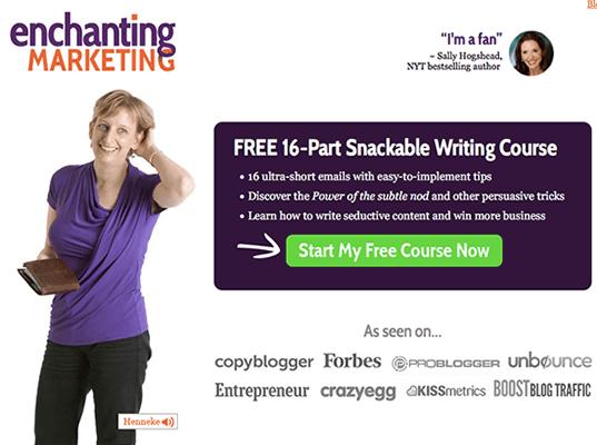 Enchanting Marketing Lead Magnet