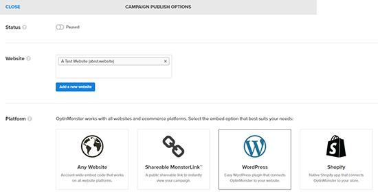 Campaign Publish Options