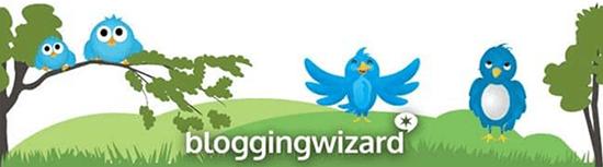 Blogging Wizard Twitter Following Logo