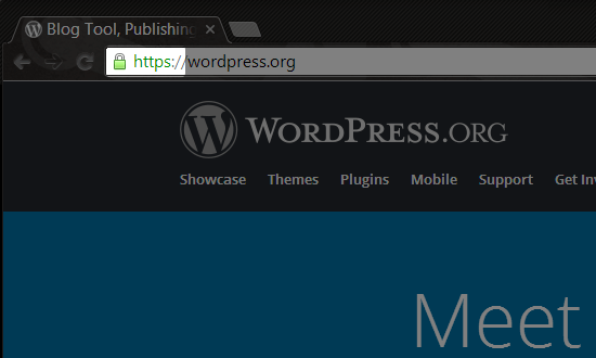 HTTPS In Browser