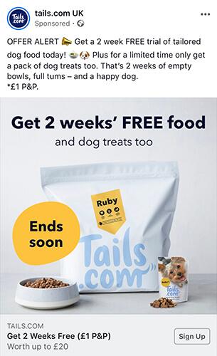 Tails.com Lead Capture Page