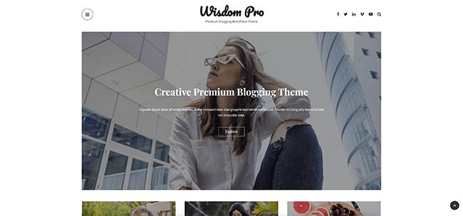 12 Wisdom Pro
