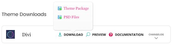 2f Divi Theme Download