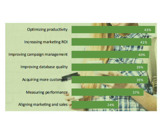 11 Most important objectives of a marketing strategy