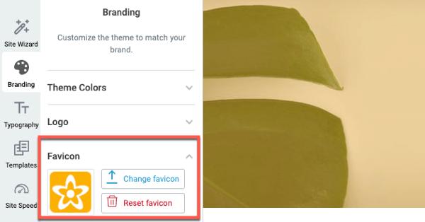 branding favicon