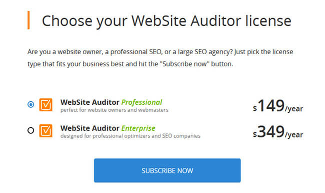 37 Choose Your Website Auditor License