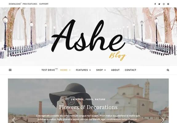 Ashe Demo Example