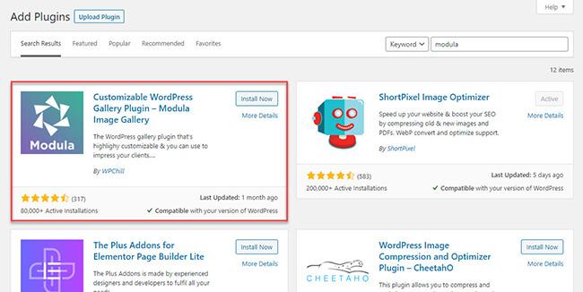 Search and install Modula plugin
