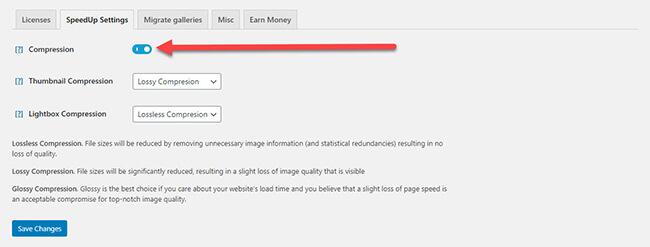 SpeedUp extension settings