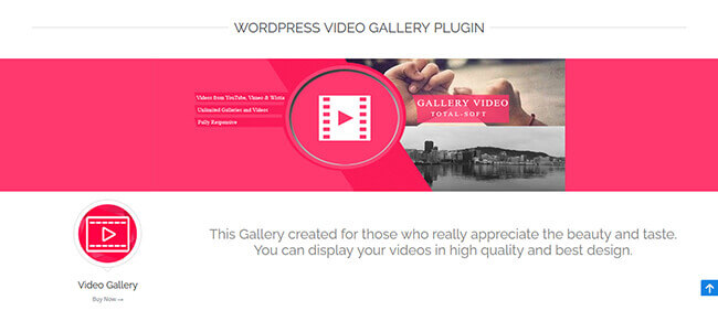 Video Gallery by Total Soft Homepage