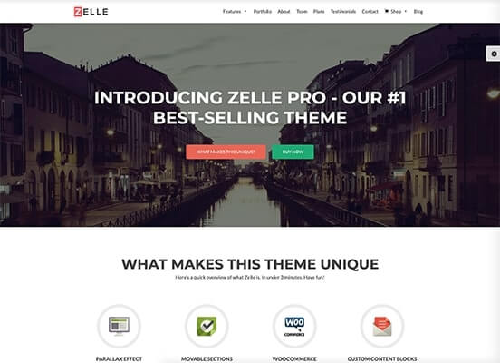 Zelle Pro Demo Example