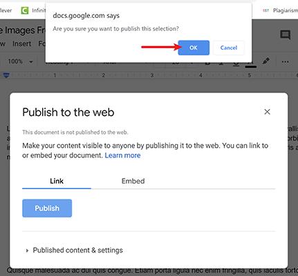 verify publish to the web