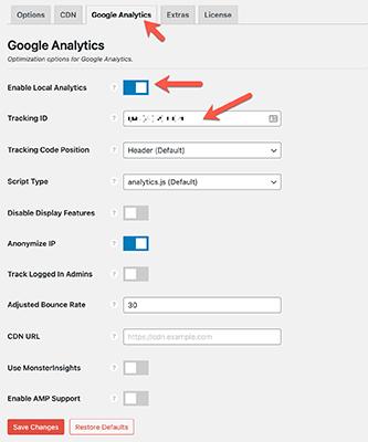 perfmatters google analytics